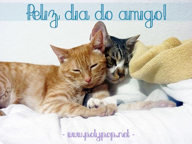 Pudim e Cookie celebrando a amizade felina dormindo abraçadinho <3