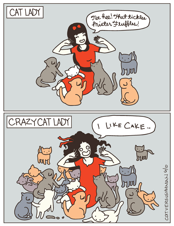 crazy-cat-lady